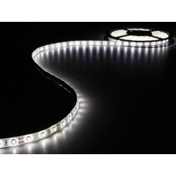 FLEXIBLE LED - BLANC FROID - 300 LED - 5 m - 12 V VELLEMAN LS12M130CW1